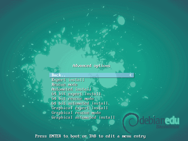 Installer advanced options screen 1